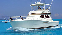 41' Viking - Cancun Fishing Charter